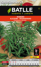 Planta romero officinalis al por mayor for Exposicion piscinas desmontables