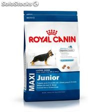 Royal Canin Maxi Junior 4.00 Kg