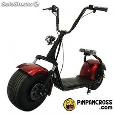 scooter harley 1000w