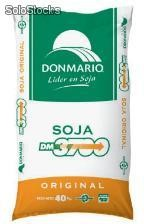 Soja DM 3700 - semillas