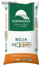 Soja DM 4970 - semillas