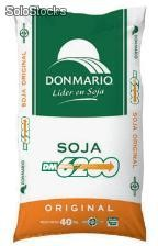 Soja DM 6200 - semillas