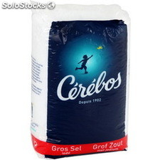 St poly 1KG sel gros iode cerebos