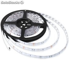 strip a led 5 striscia a led