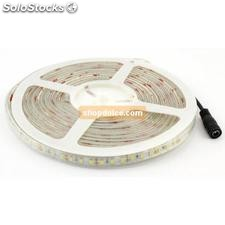 striscia led 3528 60 led/mt ip65 12 volt luce naturale 5 mt 56756