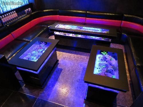 Table basse aquarium umiko for Table salon aquarium