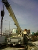 Terex-bendini a300. Year: 2003. Hours: 5.800 h ca.