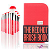 The Red Hot Brush Book