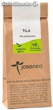 Tila Josenea 10 envelopes