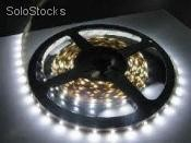 Tira de led 3528 Blanco Frio interior