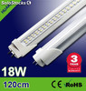 Tiras led Verde 300 pieza 5050smd led/Rollo led Strip