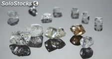 Top Quality Certified Uncut Rough Diamonds Importadores