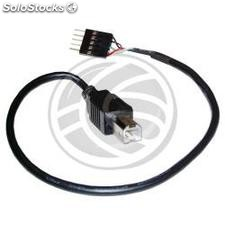 Usb 2.0 cable 5pin bm 30cm (5P-m/bm) (UB24)