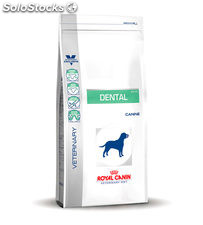 Veterinary Dental DLK 22 6.00 Kg