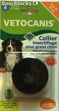 Veto collier insect gd chien