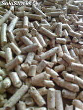 Wood pellets at the very best prices this season