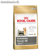 Yorkshire Terrier Adult 3.00 Kg